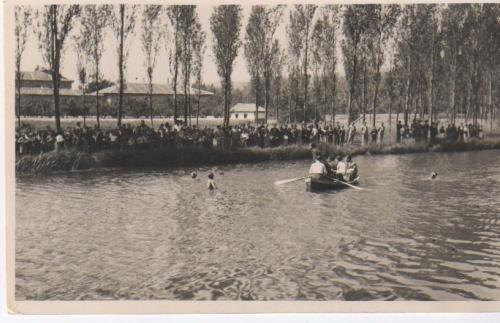 Concurso de natación en la Cascajera