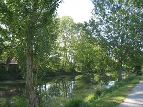 Aguilar-El río pisuerga desde El Coto-1