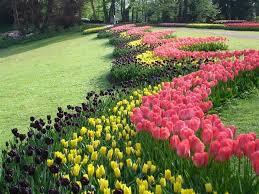 Paisaje de primavera.