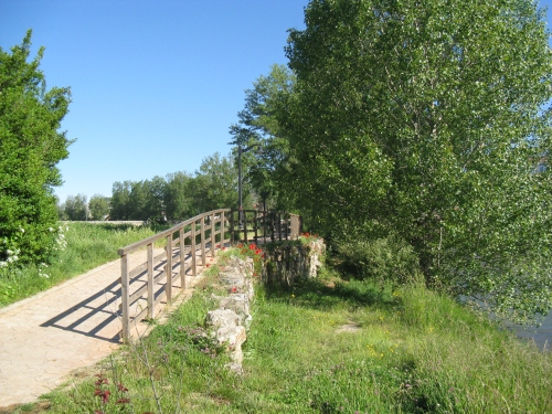 Paisaje junto al río